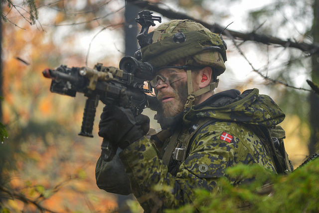 NORDEFCO Sees Cooperation as  Key  to a Changing Northern Defense Environment.